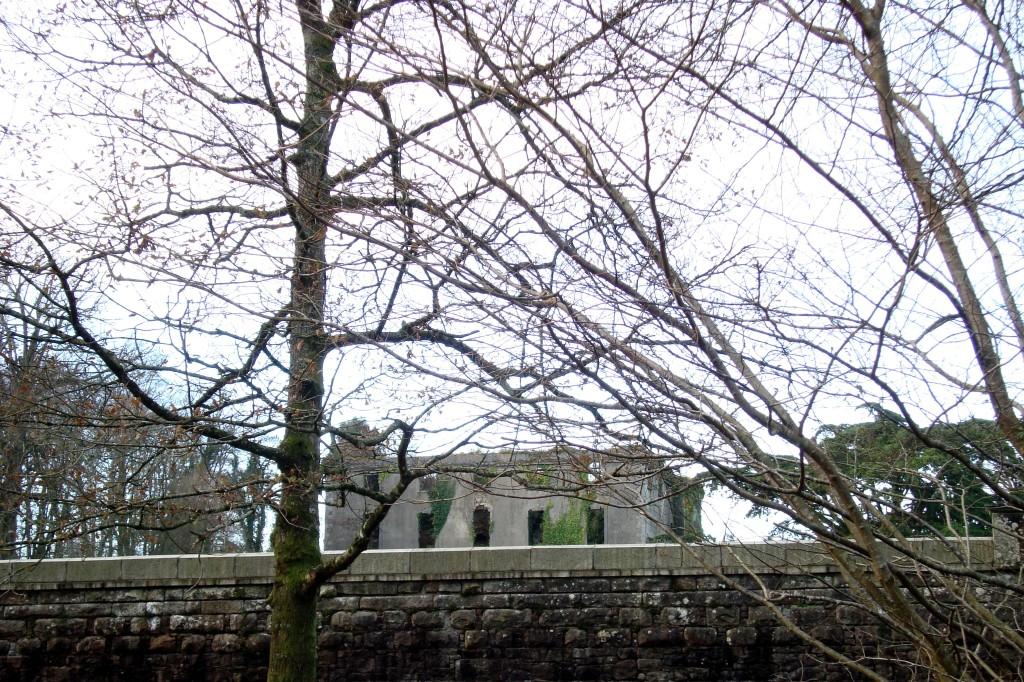 Woodstock from below the Winter Garden, Inistioge, County Kilkenny 19 Dec 09